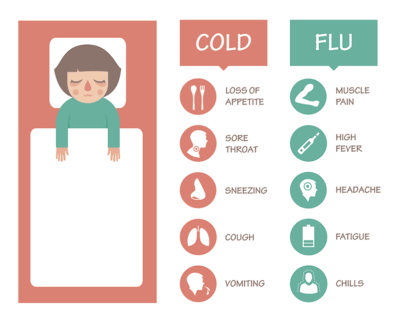 cold = loss of appetite, sore throat, sneezing, couch, vomiting, and flu = muscle pain, high fever, headache, fatigue, and chills
